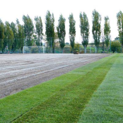 Campo Cesena